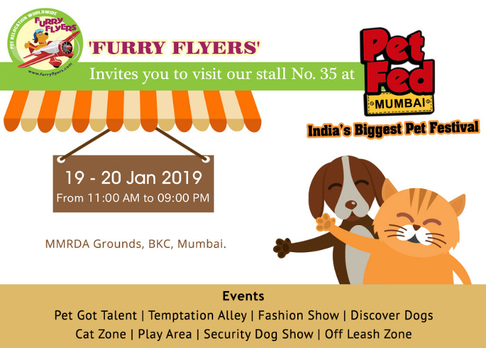 Pet Relocation Worldwide Into And From India Dog Cat Pet Import